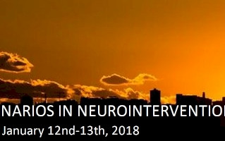 Meet us at Neuroimc Madrid 2018
