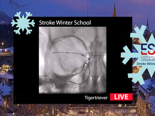 ESO- Stroke Winter School