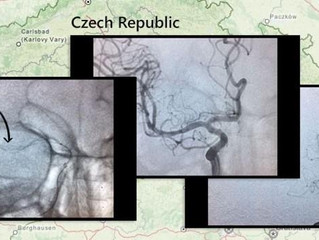 Tigertriever to the Rescue in Czech Republic