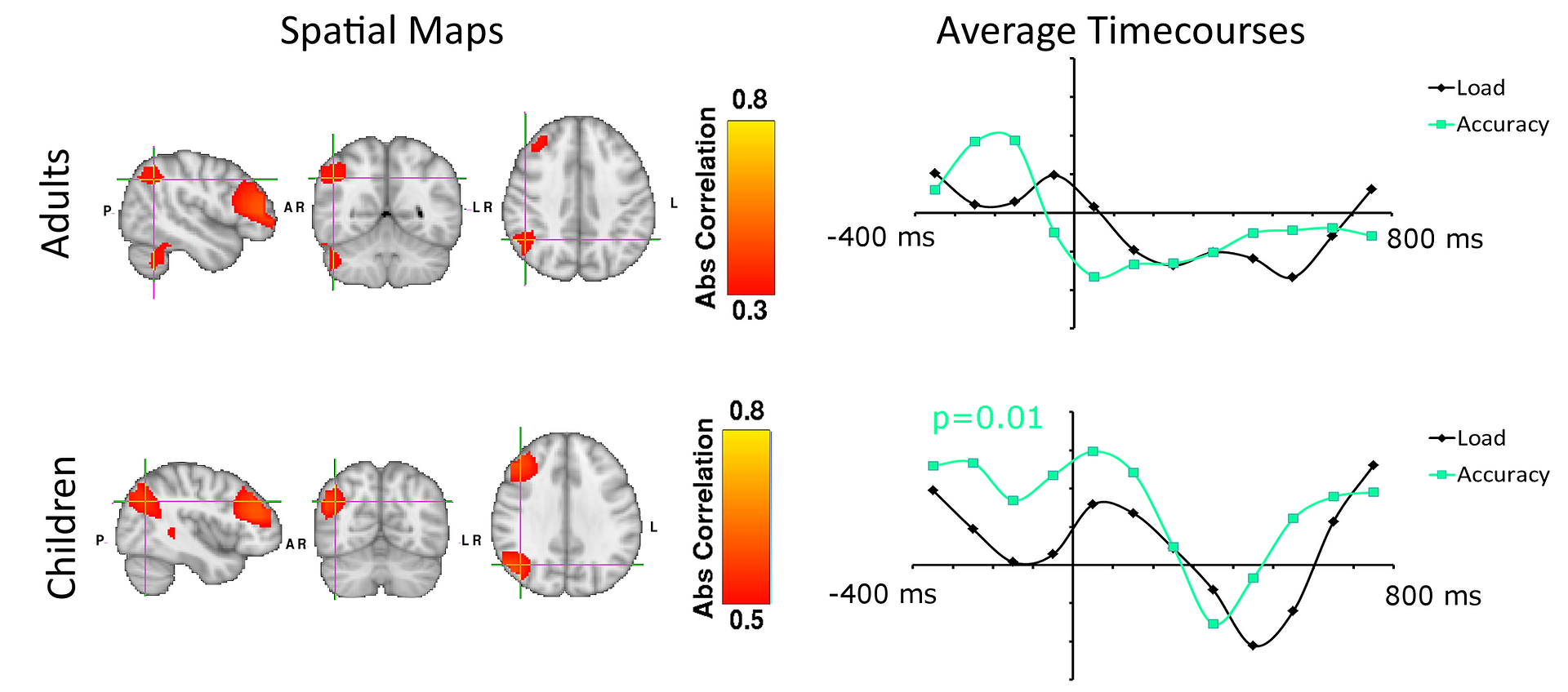 The neural dynamics of fronto-parietal networks in childhood revealed using magnetoencephalography.  Astle, Luckhoo, Woolrich, Kuo, Nobre, Scerif.  Cerebral Cortex