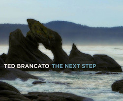 """""""The Next Step"""" CD cover"""