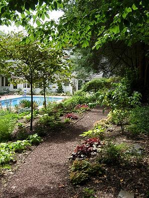 Gwendolyn Johnson Design | Landscape Design, Woodland walk, Native Plants