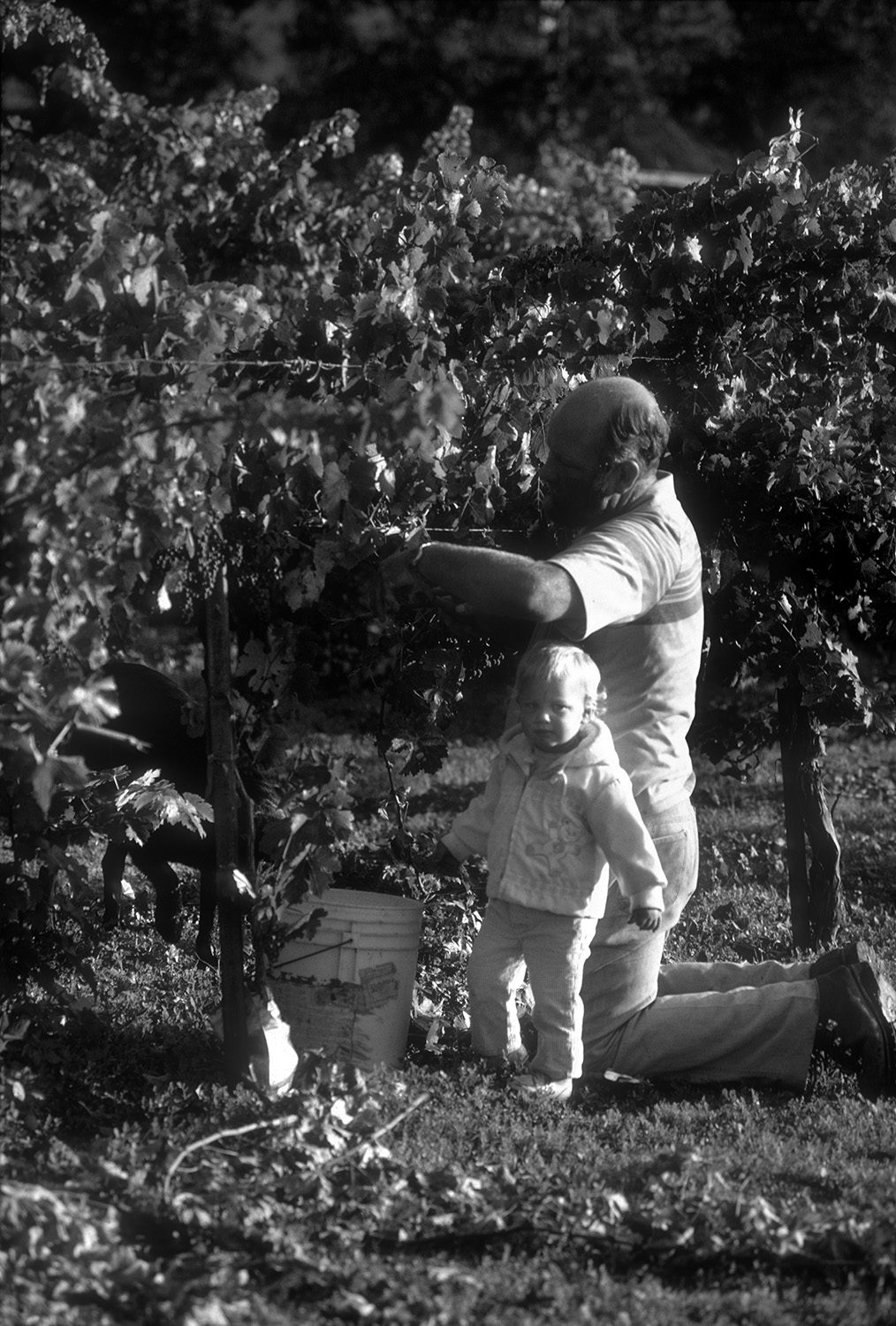 Justin Pruning with Holly
