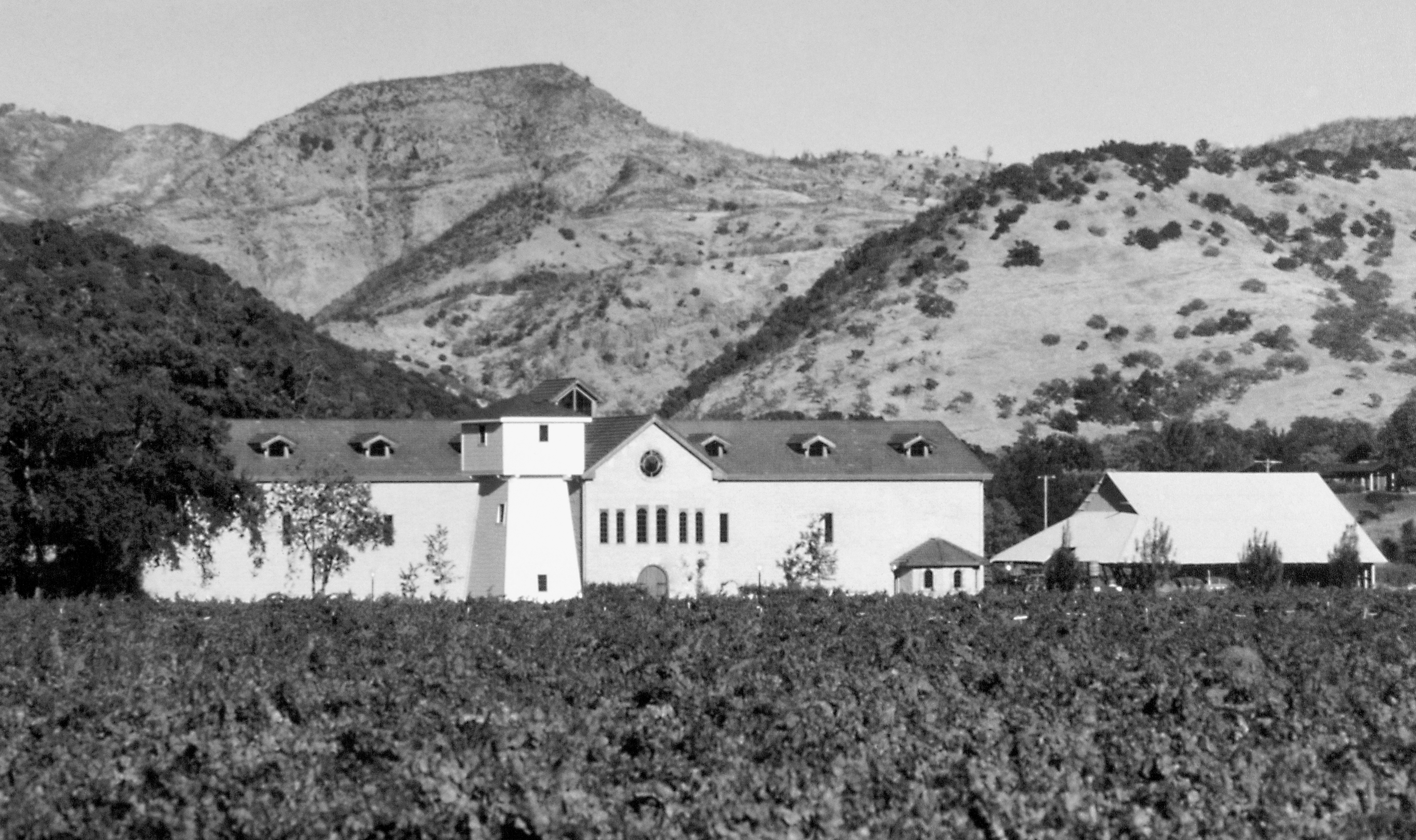 Photo of Original Silver Oak Cellars