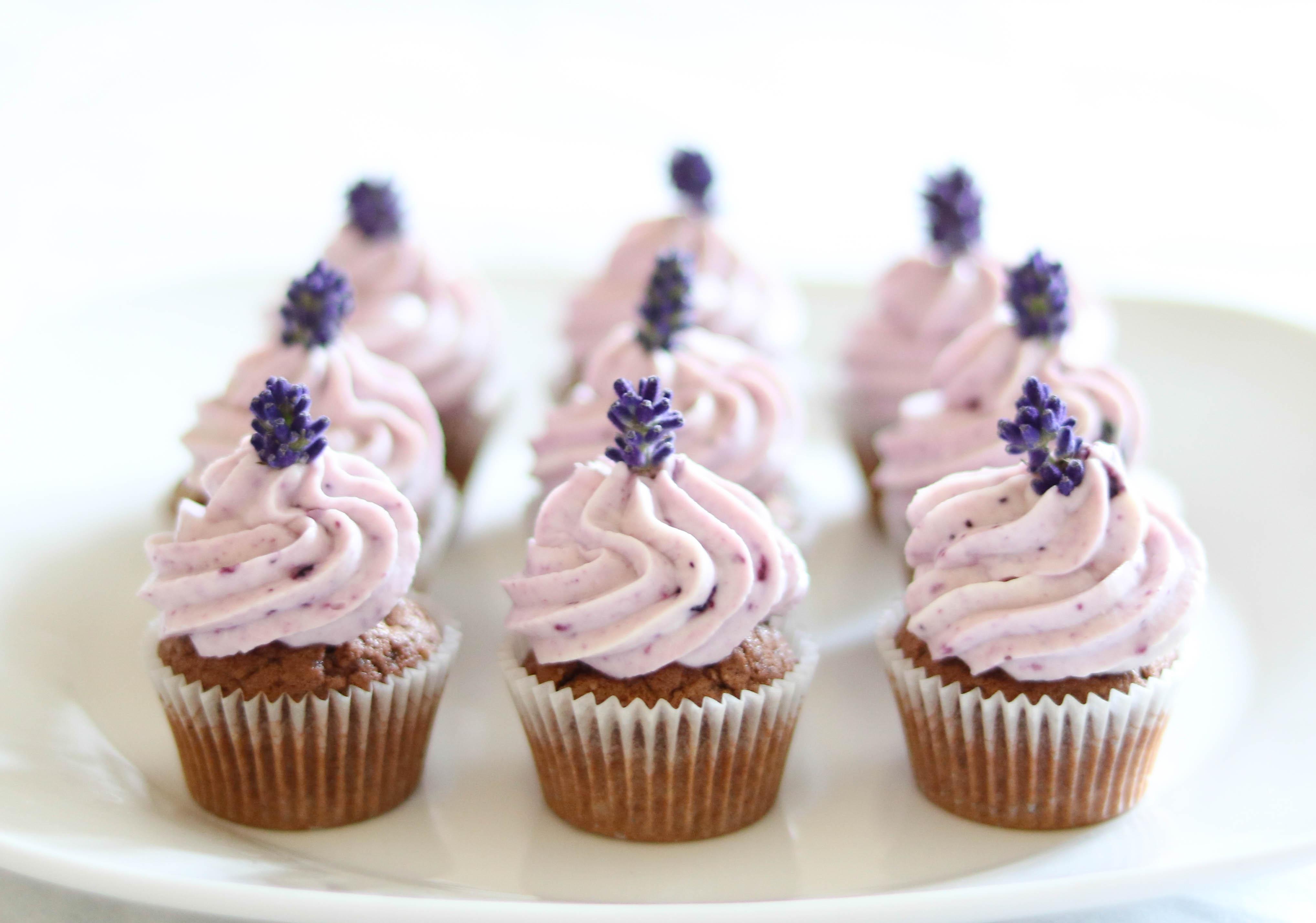 Minicupcakes Heidelbeer