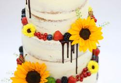 Semi Naked Cake Dripcake