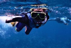 Snorkling Activity