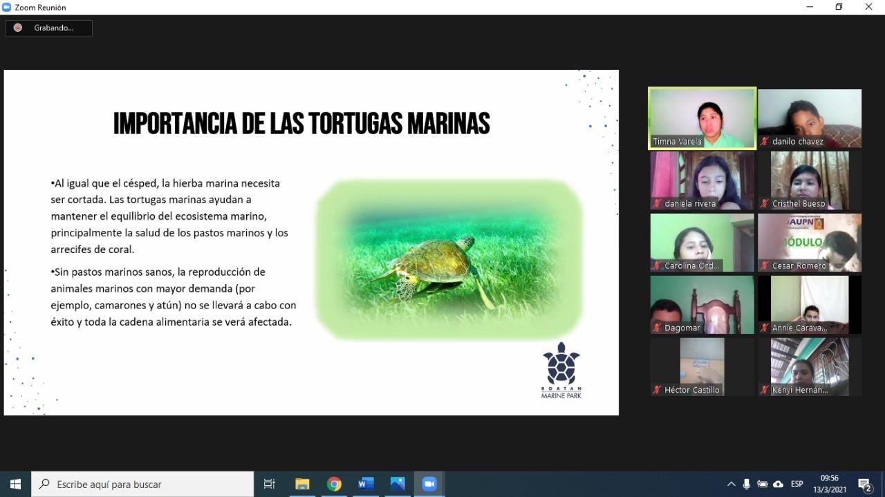 20210313_Charla Tortugas Guardianes de