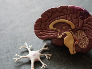 New Study Suggests CBD May Help Combat Alzheimer's Disease