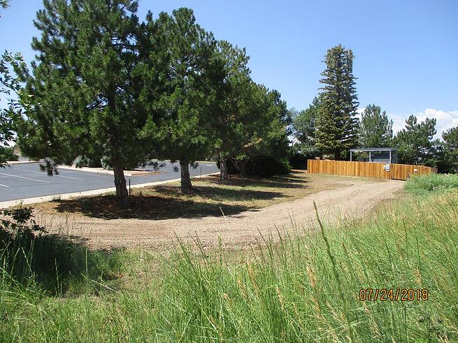 Den Sanctuary tree road site overall.JPG