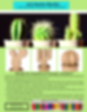 Art-Gecko-Cacti-Kit-2020-April.png
