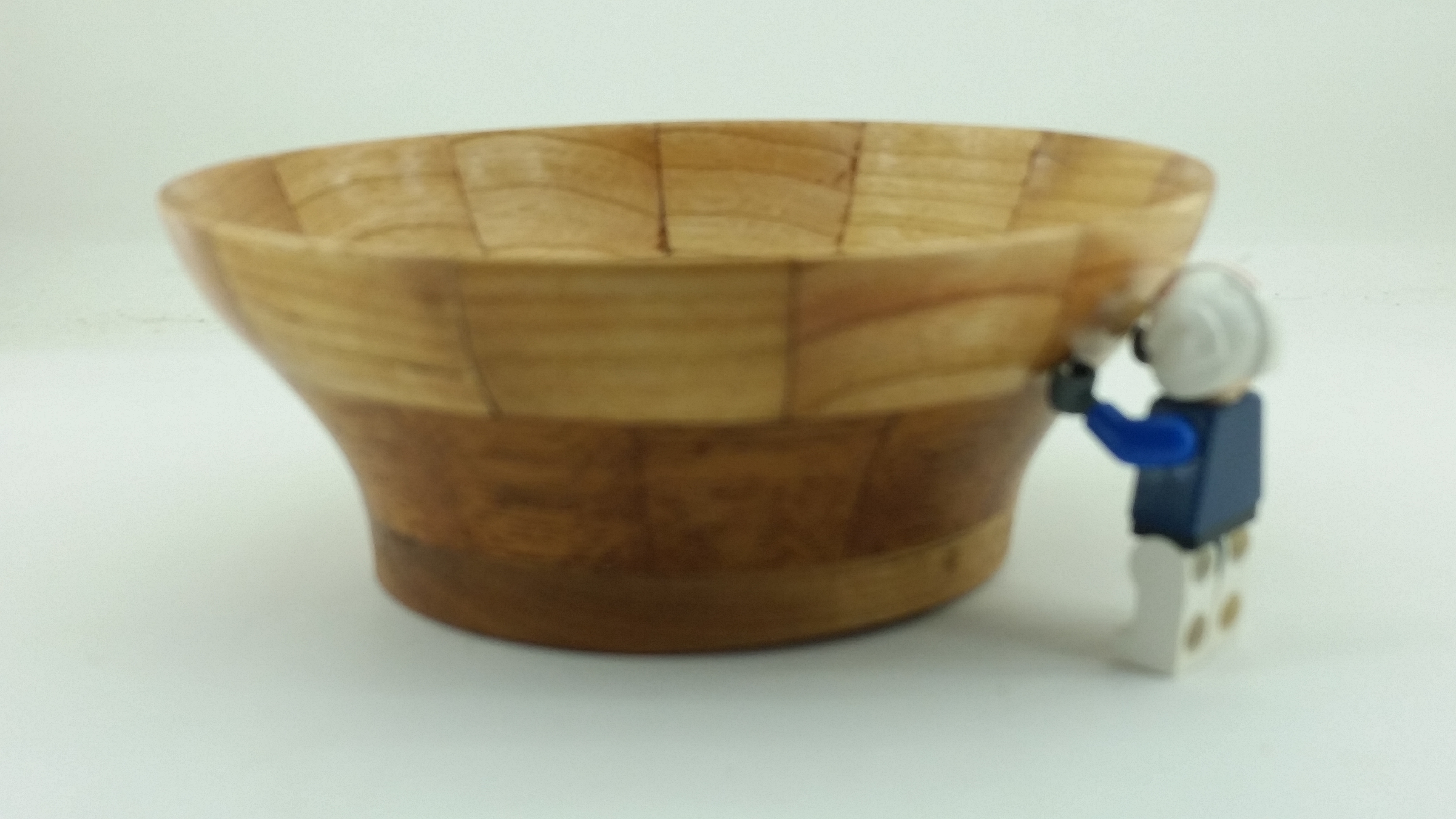 first segmented bowl