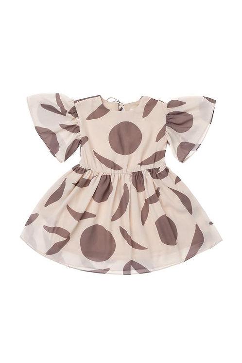 Printed Fit & Flare Dress W/ Ruffled Sleeve