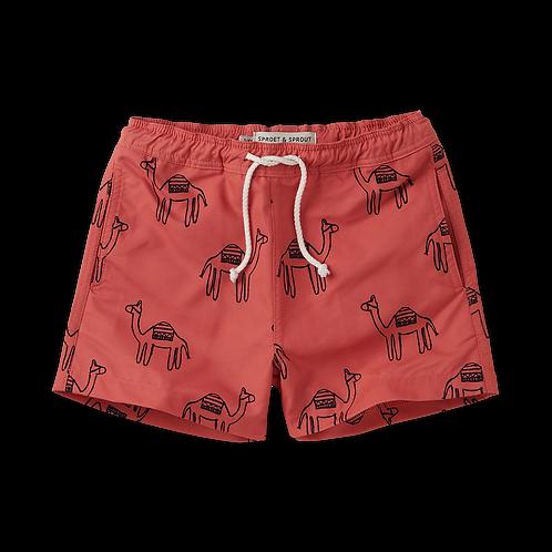 Swim short- Camel