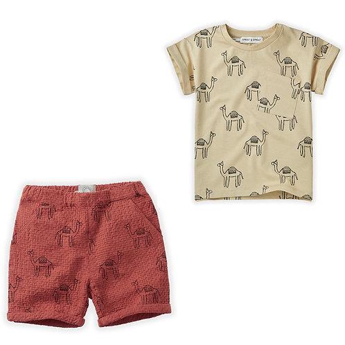Camel Print T-Shirt & Short Set