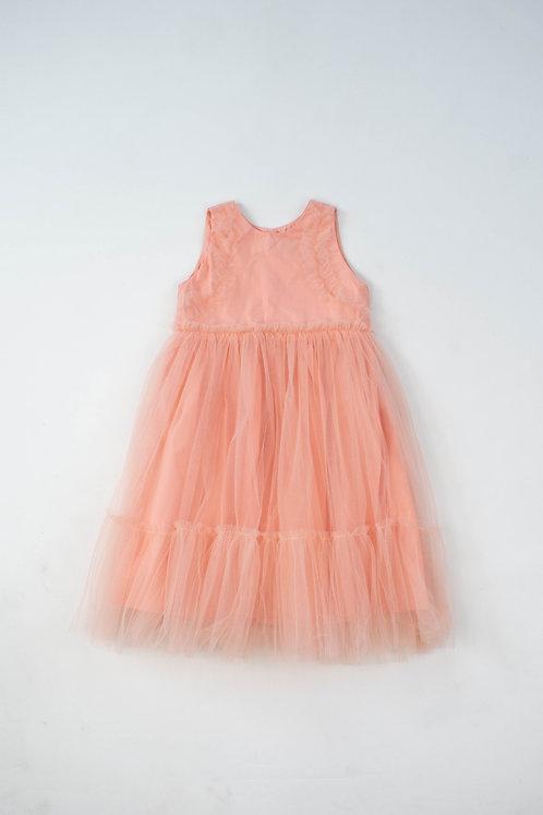 Salmon Pink Dreamland Dress