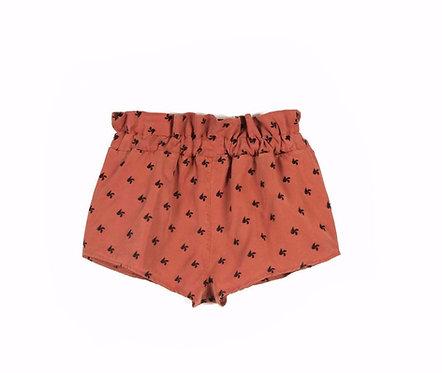 Adolfo  R.Helix Shorts