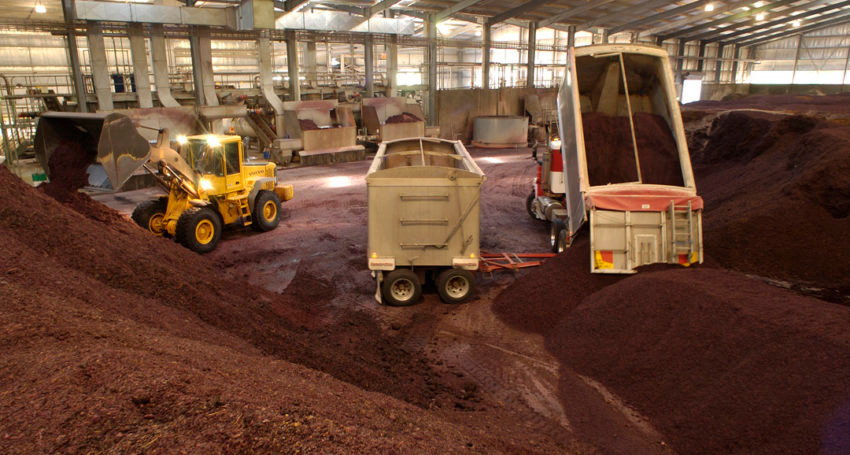 Wine industry produced grape marc is one of the agriculture wastes being tested for its suitability as an activated carbon feedstock.