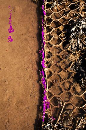 Water, purple, wire