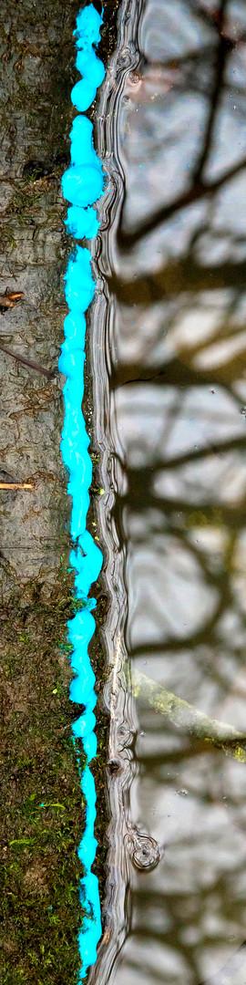 Stick, blue, water.