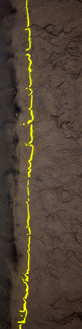 Water, yellow, mud.