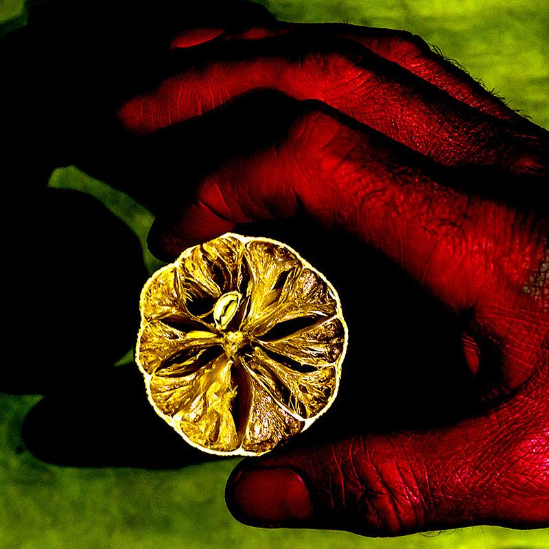 Dry lemon, Red Hand, on Green