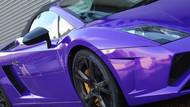Lambo Purple