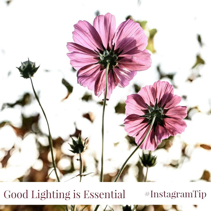 6 Lighting Tips for Photos on Instagram
