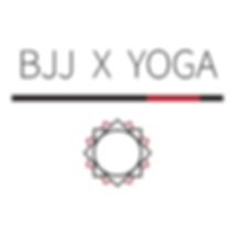BJJ X Logo 300.png