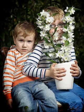 Max und Lukas mit Dendrobium nobile Apollon