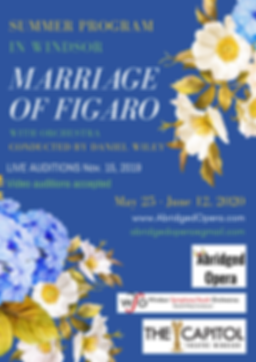 Figaro Audition Poster.png