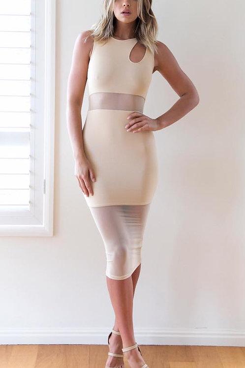 BIANCA MESH DRESS-NUDE