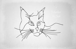 commande chat fil de fer