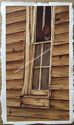 Window of Memories