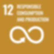 SDG 12.png