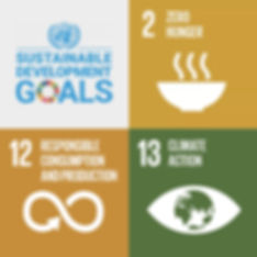 sustainable-development-goals.jpg