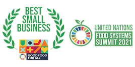 UN award logo.png
