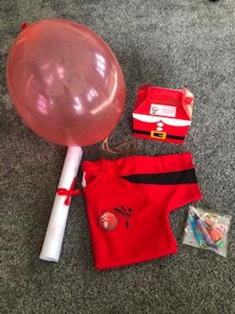 Sensei Santa's Christmas Surprise