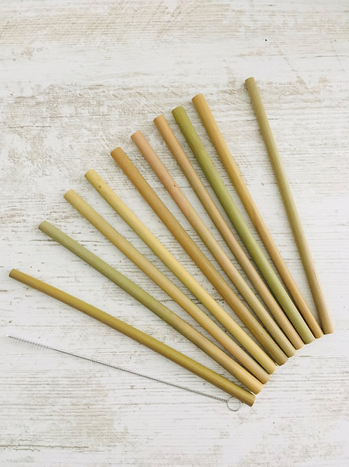 Lot de 10 pailles bambou & 1 goupillon