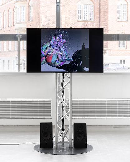 installation. Morehshin.photo Mikkel Kaldal.jpg
