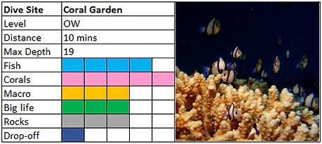 Coral Garden Scuba Diving Mauritius site
