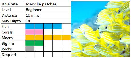 Merville Patches Scuba Diving Mauritius site