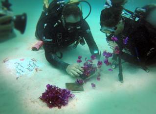 Romantic underwater proposal in Mauritius