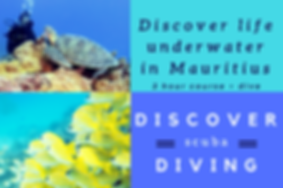 Discover scuba diving with Ocean Spirit Mauritius
