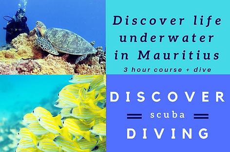 Discover scuba diving with Ocean Spirit Mauritius