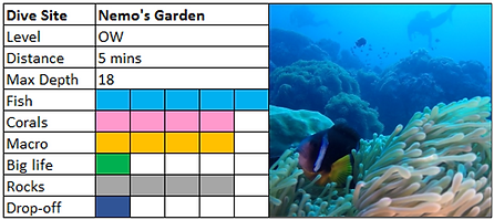 Nemo's Garden Scuba Diving Mauritius site