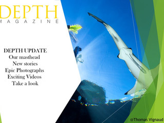 DEPTH Magazine Free on Line September Publication- Please REGISTER NOW
