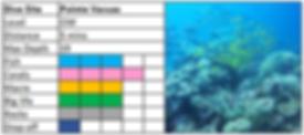 Poite Vacuas Scuba Diving Mauritius site