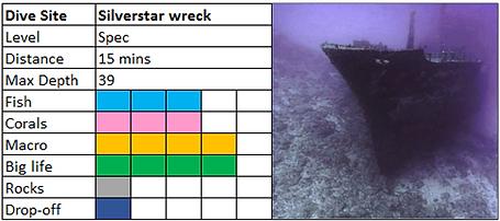 Silverstar wreck scuba diving site Mauritius