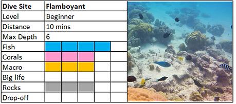 Flamboyant Scuba Diving Mauritius site